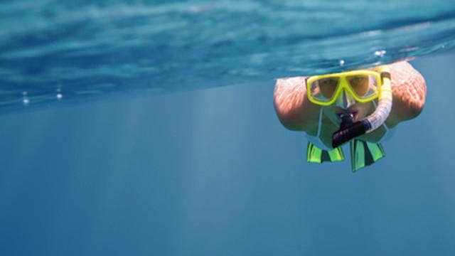 Babaplaya : un jeu de plage pour observer les poissons sans les blesser !