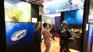 Salon International de la Plongée Sous-Marine : toutes les nouveautés 2019 !
