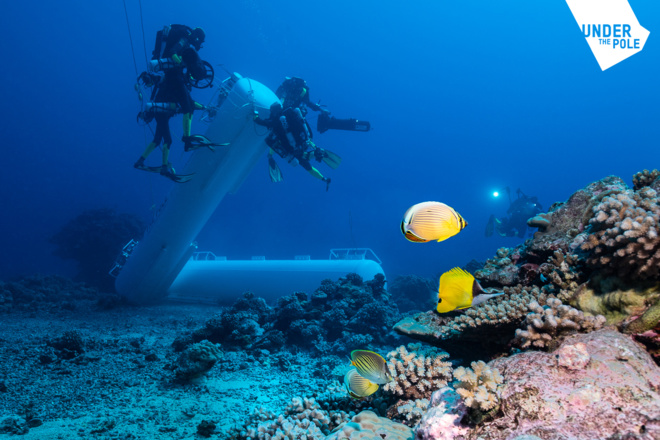 """L'immersion par les plongeurs des deux ballasts de la """"Capsule""""."""