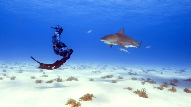 Série Lords of the Ocean - Épisode 01 : de Brest aux îles Canaries !