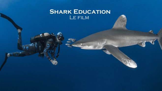 """Shark Education"", le film : participez à l'aventure !"