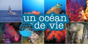 """""""Un Océan de Vie"""" : sauvons les mers de la pollution et des déchets !"""