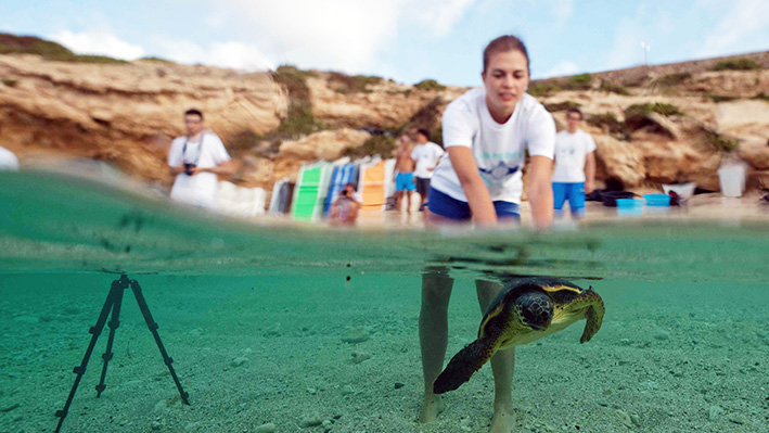 Fondation Octopus : au service de la science et de la protection des océans
