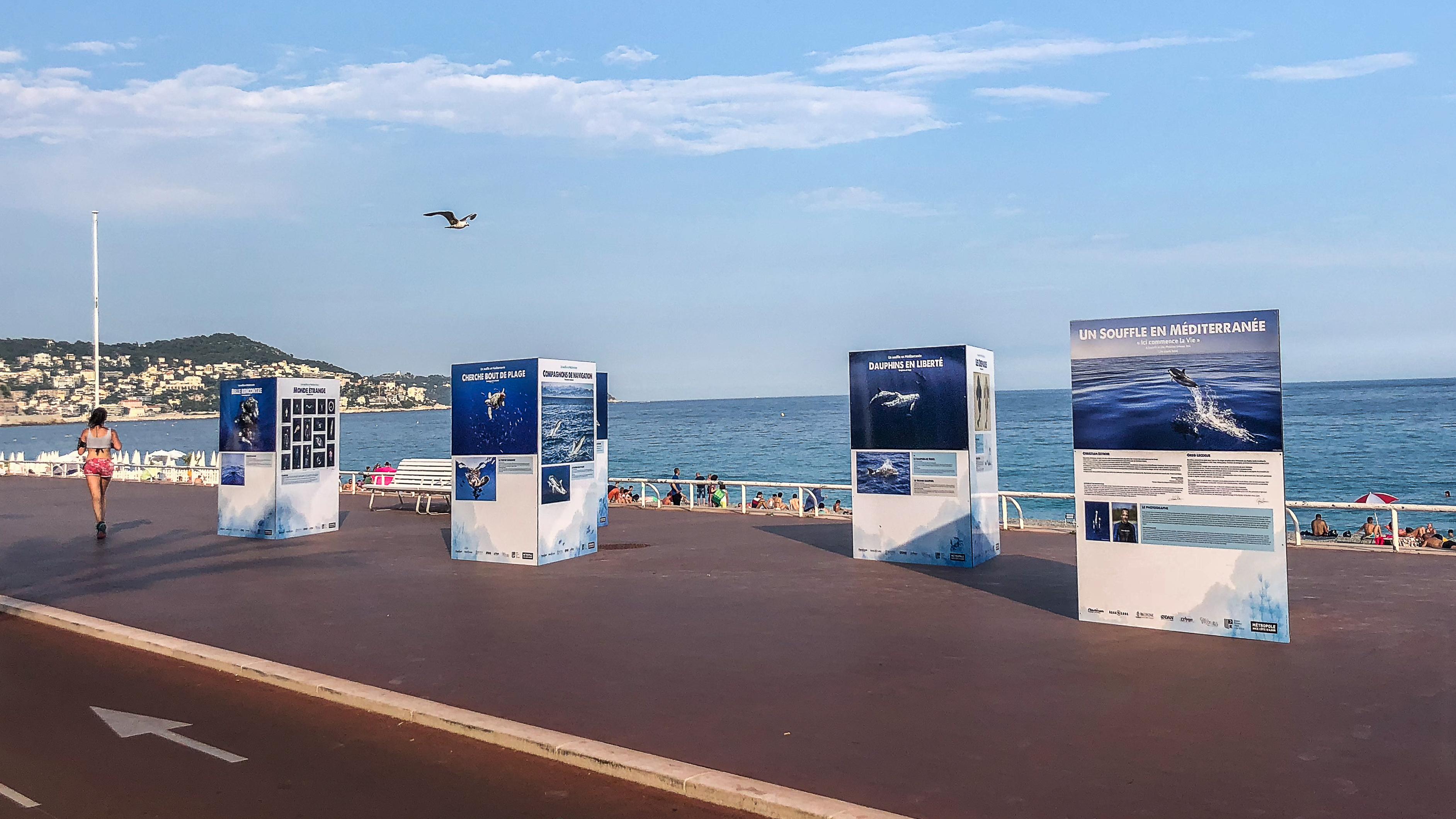 Superbe exposition du photographe Greg Lecoeur sur la Promenade des Anglais !
