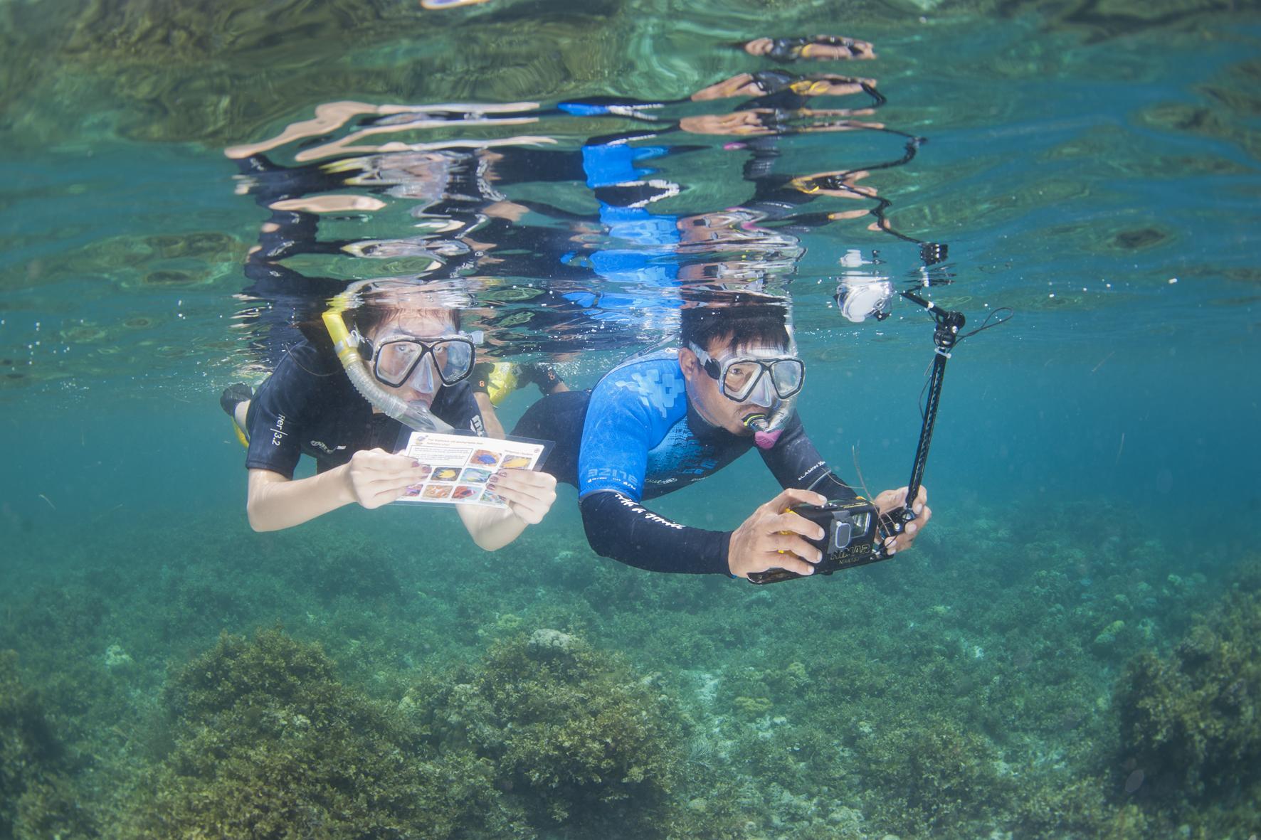 La nouvelle enquête sous-marine organisée par Objectif Atlantide en 2019 aux Philippines !