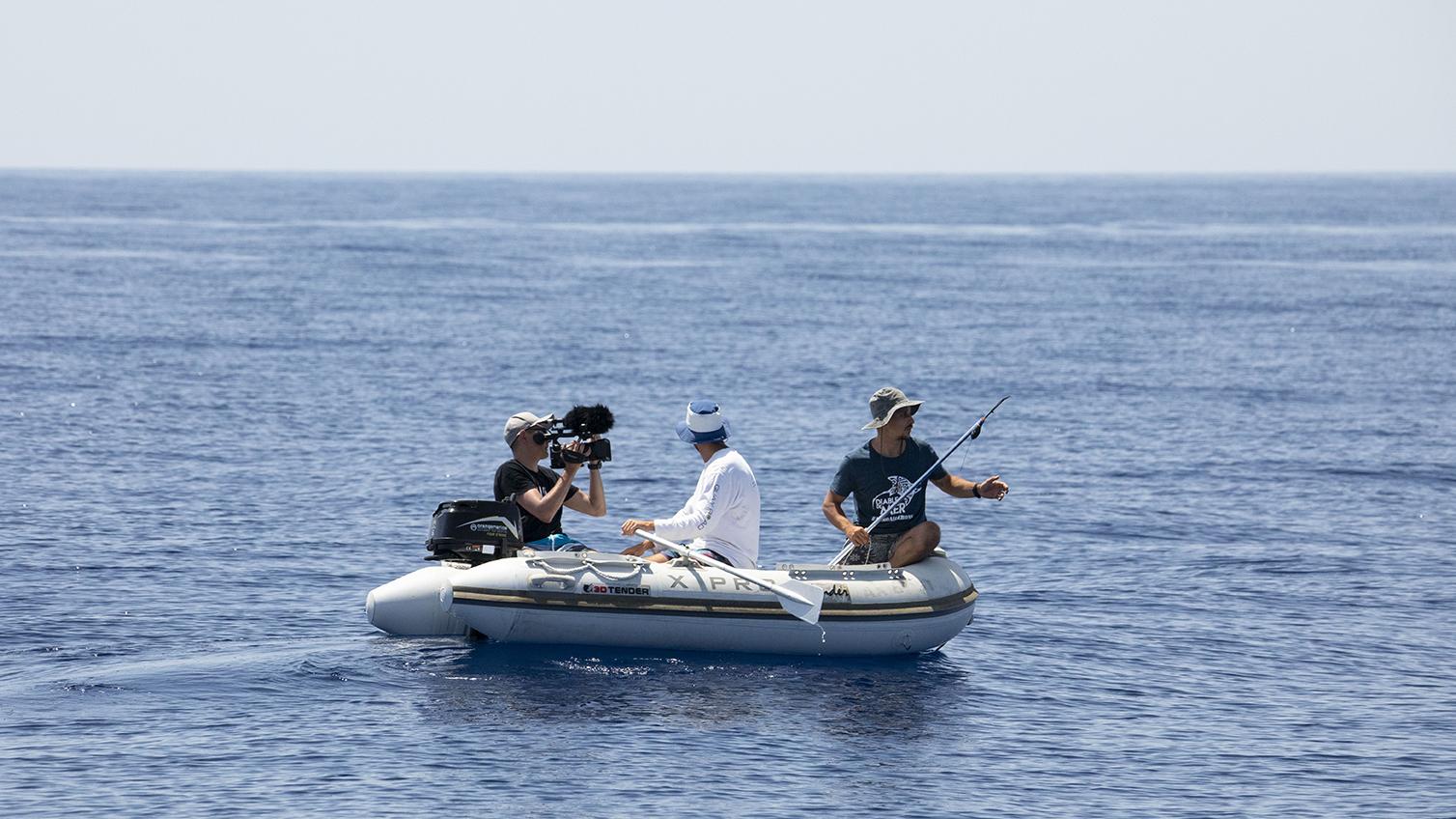 """""""Diable de mer"""" : l'expédition de plongée à la rencontre des raies Mobula en Corse !"""
