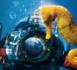 https://magazine.plongee-sous-marine.tv/Salon-International-de-la-Plongee-Sous-Marine-toutes-les-nouveautes-2019-_a70.html