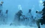 Manta Reef : les plongeurs de Coral Guardian restaurent le corail en Indonésie !