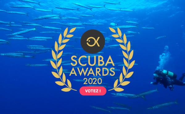 Scuba Awards : la compétition de vidéo sous-marine 2020 !